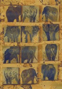 carpet-texture (20)