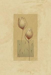 carpet-texture (98)