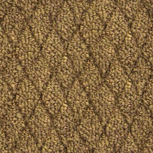 carpeting-texture (17)