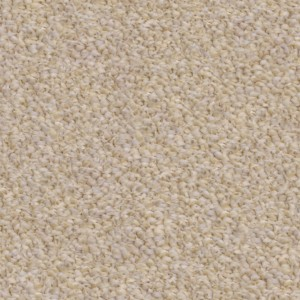 carpeting-texture (21)