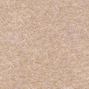 carpeting-texture (24)