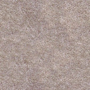 carpeting-texture (27)