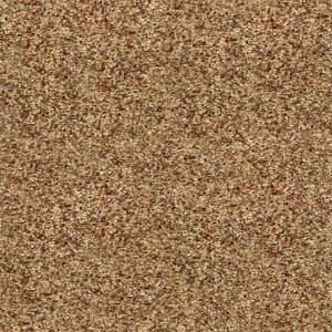 carpeting-texture (37)