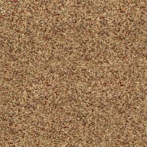 carpeting-texture (37)