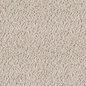 carpeting-texture (44)
