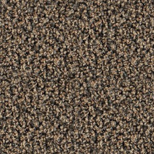 carpeting-texture (47)