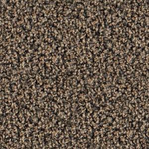 carpeting-texture (47)