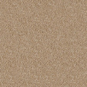 carpeting-texture (54)