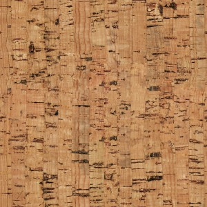 cork-texture (54)
