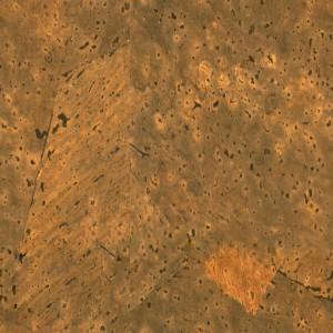 cork-texture (68)