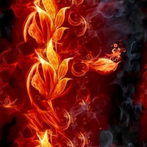 fire-(39)