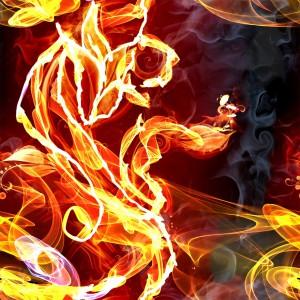 fire-(64)