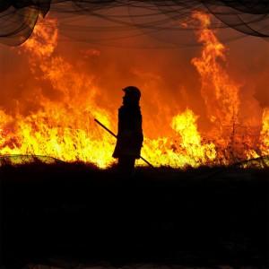 fire-(82)