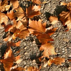 foliage-texture (34)
