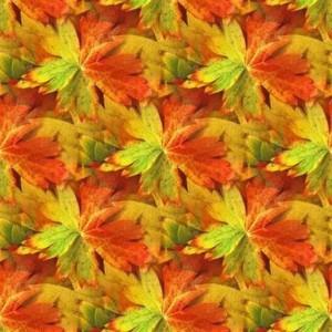 foliage-texture (64)