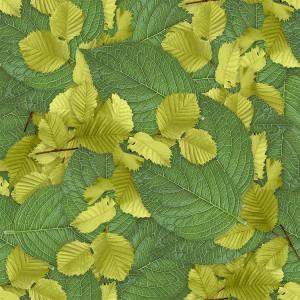 foliage-texture (73)