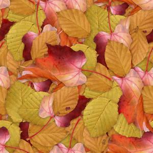 foliage-texture (80)