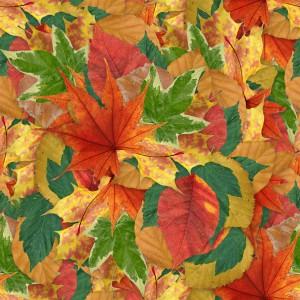 foliage-texture (83)