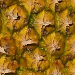 fruitpeel-texture (12)