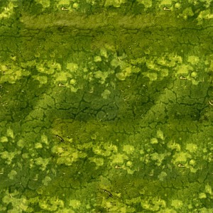 fruitpeel-texture (22)