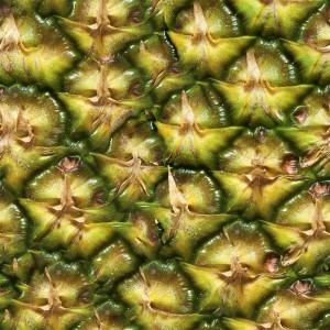fruitpeel-texture (27)