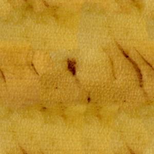 fruitpeel-texture (58)