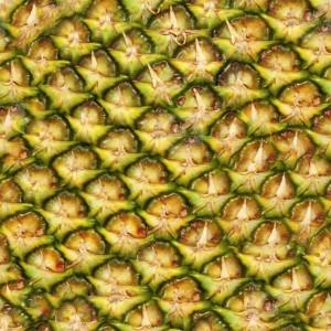 fruitpeel-texture (68)
