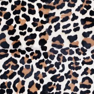 fur-texture (16)