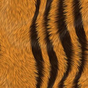 fur-texture (20)