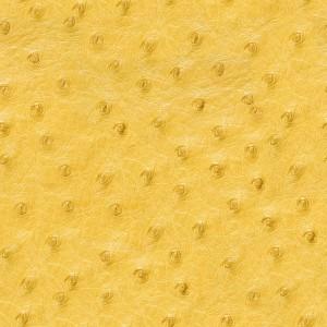 fur-texture (22)