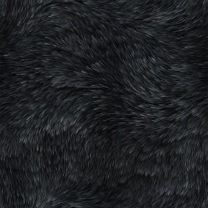 fur-texture (24)