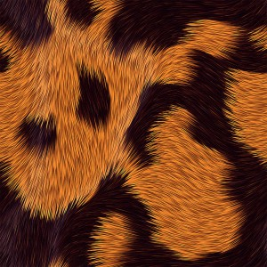 fur-texture (30)