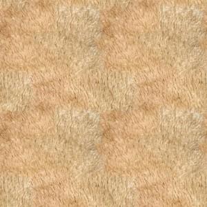fur-texture (37)