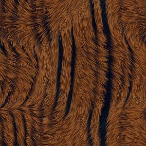 fur-texture (40)