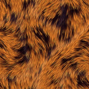 fur-texture (42)