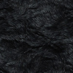 fur-texture (48)