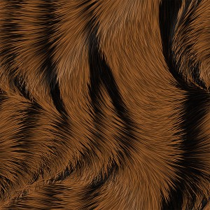 fur-texture (5)