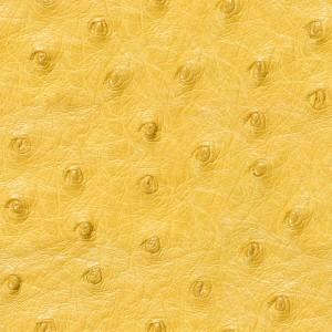 fur-texture (64)