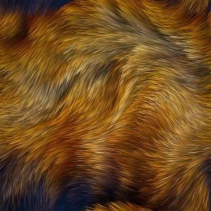 fur-texture (66)