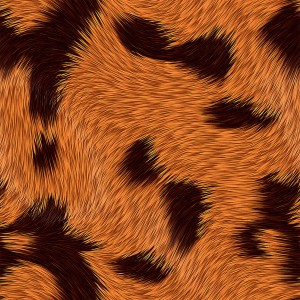 fur-texture (7)