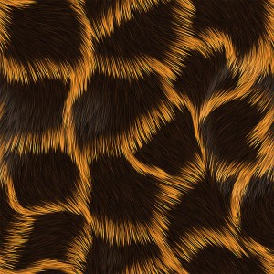 fur-texture (79)