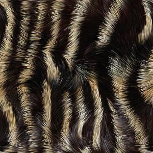 fur-texture (80)