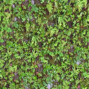 grass-texture (18)