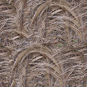 grass-texture (22)
