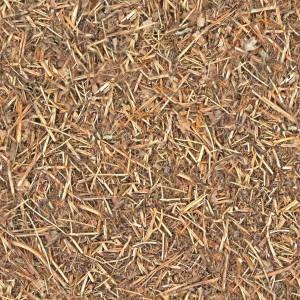 grass-texture (24)