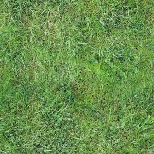 grass-texture (27)