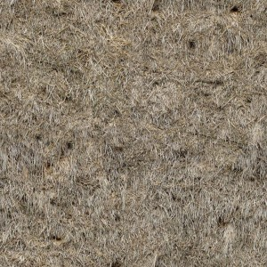 grass-texture (33)