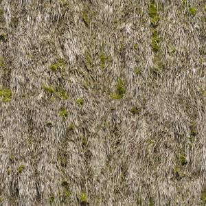 grass-texture (4)