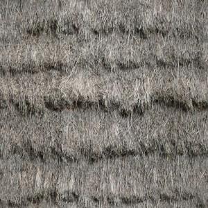 grass-texture (44)