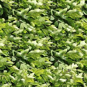 grass-texture (45)